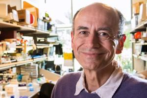 Thomas Südhof won the 2013 Nobel Prize in Physiology or Medicine.