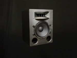 The 1200 watt Solo 12MF from Augspurger.