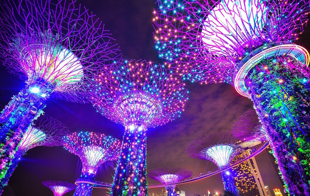 Gardens By The Bay. Photo: Suyash Dixit. Licensed as Public Domain with Creative Commons.