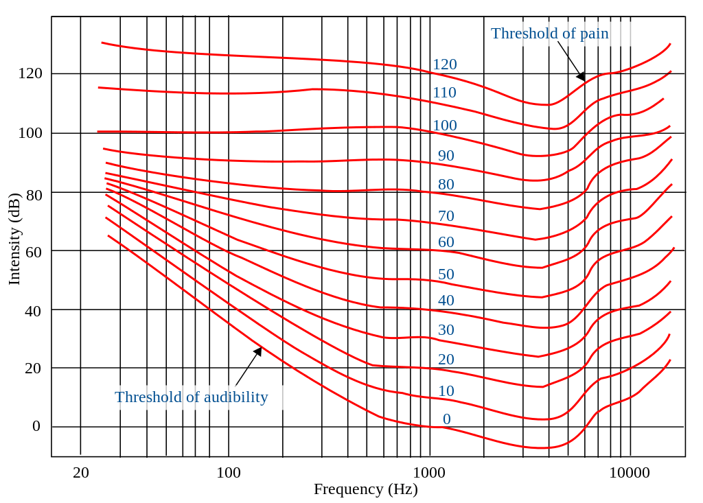 The Fletcher–Munson curves illustrate that our perception of sound changes at different volumes