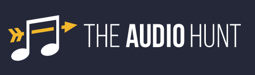 The Audio Hunt: Running Your Tracks Through Iconic Studio Gear Online?